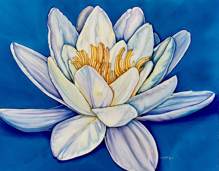 Lotus on Blue_Cynthia West
