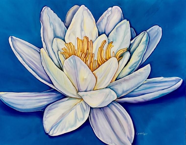 Lotus on Blue_Cynthia West