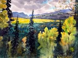 Vladimir Zhikartsev Solo Exhibition