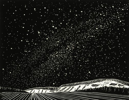Starry night over the Tanana_2015_cropped_C_Ina Timling_web-size