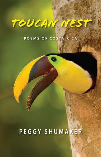 toucan nest lg