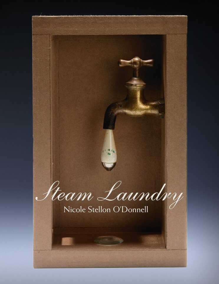 steam-laundry-nicole-stellon-odonnell