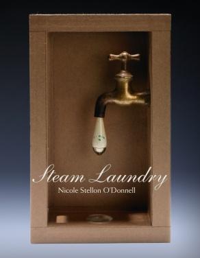 SteamLaundryCVR