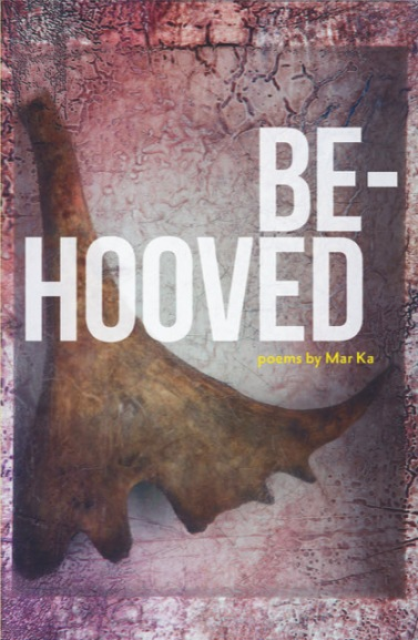 Be-hooved front cover