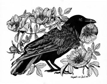 Crow&Roses_vanLent
