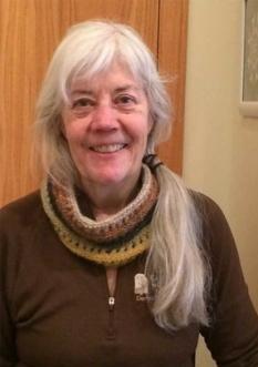 Nancy-Hausle-Johnson-web